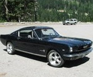 Customer Review '66 Mustang Ford 302 Crate Engine Proformance Unlimited